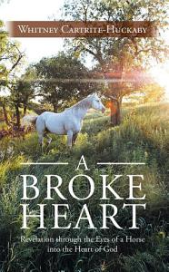 A Broke Heart PDF