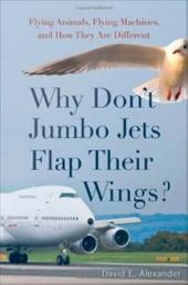 Why Don't Jumbo Jets Flap Their Wings?: Flying Animals, Flying Machines, and How They Are Different