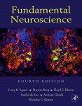 Fundamental Neuroscience PDF