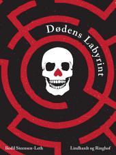 Dødens labyrint