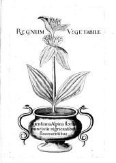 Gazophylacium Rerum Naturalium E Regno Vegetabili, Animali Et Minerali Depromptarum, Nunquam Hactenus ... Editarum