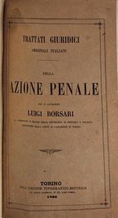 Della azione penale per il cavaliere Luigi Borsari