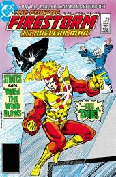The Fury of Firestorm (1982-) #29