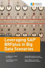 Leveraging SAP BRFplus in Big Data Scenarios