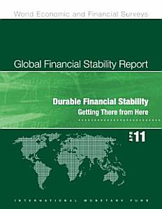 Global Financial Stability Report April 2011  Durable Financial Stability   Getting There from Here Book