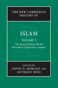 The New Cambridge History of Islam  Volume 3  The Eastern Islamic World  Eleventh to Eighteenth Centuries PDF