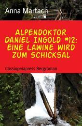 Alpendoktor Daniel Ingold #12: Eine Lawine wird zum Schicksal: Cassiopeiapress Bergroman