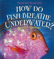 How Do Fish Breathe Underwater?