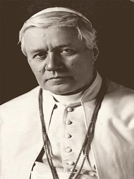 Download Pope St  Pius X Book