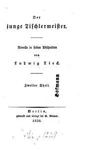 Der junge Tischlermeister: Novelle in 7 Abschnitten, Band 2