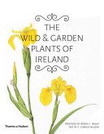 The Wild   Garden Plants Of Ireland