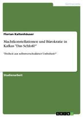 """Machtkonstellationen und Bürokratie in Kafkas """"Das Schloß?"""": """"Freiheit aus selbstverschuldeter Unfreiheit?"""""""