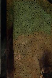 La Italia pintoresca: Roma pintoresca, antigua y moderna : historia, descripción, costumbres actuales : obra publicada a la vez en Francia e Italia. Parte Segunda