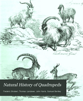 Natural History of Quadrupeds: Volume 1