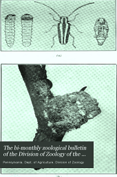 The bi-monthly zoological bulletin of the Division of Zoology of the Pennsylvania Department of Agriculture: Volume 5, Issues 1-2