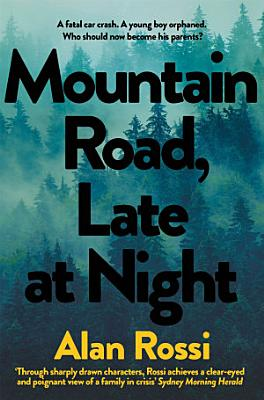 Mountain Road  Late at Night