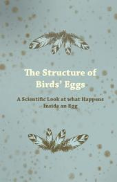 The Structure of Bird's Eggs - A Scientific Look at What Happens Inside an Egg