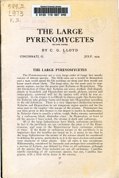 The large Pyrenomycetes
