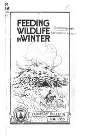 Feeding Wildlife in Winter