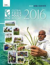 加强小农的作用: 第二章 , 2016全球粮食政策报告