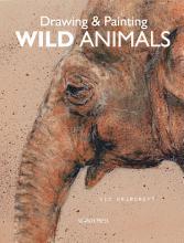 Drawing   Painting Wild Animals PDF