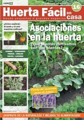 Huerta Fácil en casa16 - Cultiva desde pequeños a grandes espacios: Curso visual y práctico