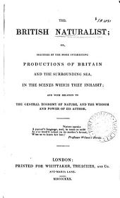 The British naturalist, or, Sketches of the more interesting productions of Britain and the surrounding sea: in the scenes which they inhabit, and with relation to the general economy of nature, and the wisdom and power of its Author, Volume 2