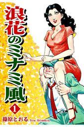 浪花のミナミ風(1)
