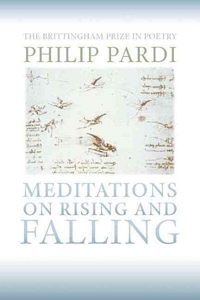 Download Meditations on Rising and Falling Book