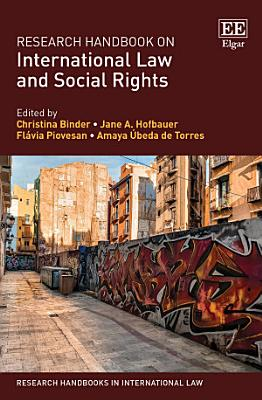 Research Handbook on International Law and Social Rights PDF