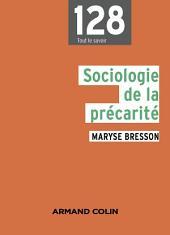 Sociologie de la précarité: Domaines et approches