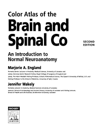 Color Atlas of the Brain and Spinal Cord