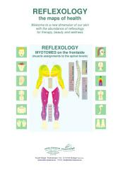 REFLEXOLOGY - MYOTOMES on the frontside: REFLEXOLOGY - the maps of health