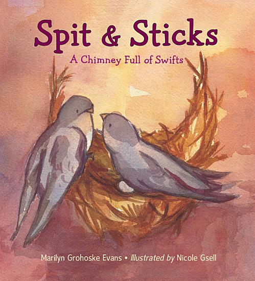 Spit   Sticks PDF