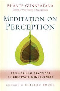 Meditation on Perception Book