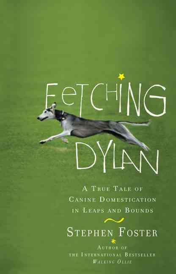 Fetching Dylan