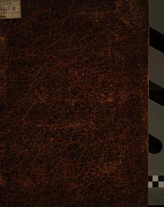Prager Abendblatt 1867   1918 PDF