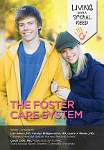 The Foster Care System