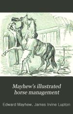 Mayhew's Illustrated Horse Management