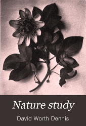 Nature Study: One Hundred Lessons about Plants