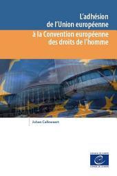L'adhésion de l'Union européenne à la Convention européenne des droits de l'homme