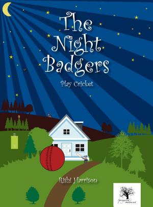 The Night Badgers   Play Cricket