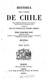 Historia física y política de Chile: segun documentos adquiridos en esta republica durante doce años de residencia en ella y publicada bajo los auspicios del Supremo Gobierno. Botanica ; 6, Volumen 4