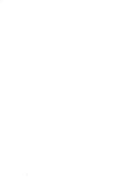 Southern Historical Society Papers: Volume 10