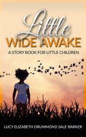 Little Wide Awake - A story book for little children
