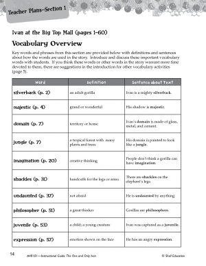 The One and Only Ivan Vocabulary Activities