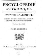 Reptiles, Poissons, Mollusques, Crustacés, Annelides, Arachnides, Insectes, Radiaires