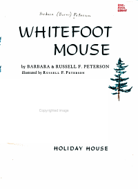 Whitefoot Mouse PDF
