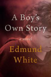 A Boy's Own Story: A Novel, Book 1
