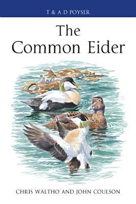 The Common Eider PDF